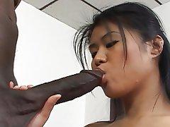 Babe Asian Blowjob Black